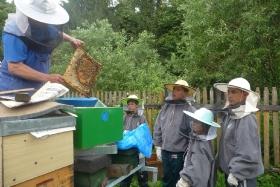 Letní pobyt včelaříků 2011